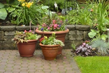 planters1