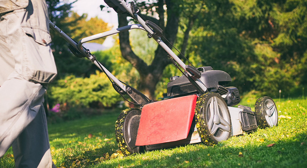royal city nursery guelph fall lawn care guide mowing