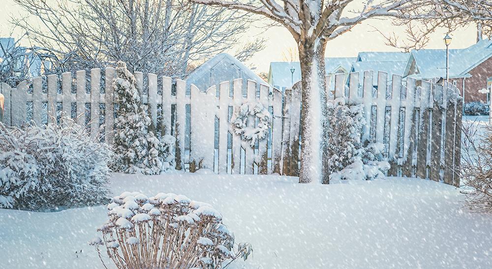 royal city nursery guelph 6 tips for winterizing your landscape backyard