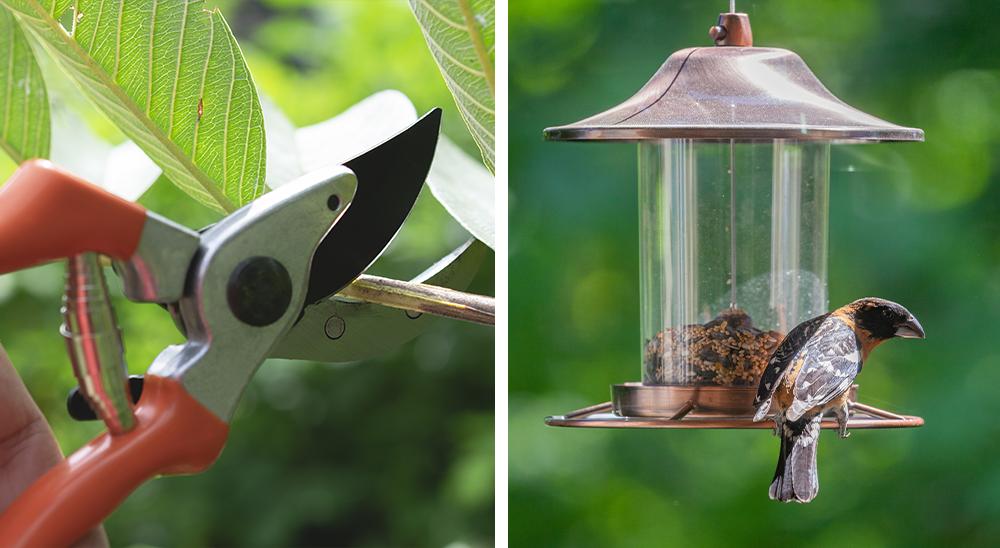 royal city nursery guelph giving guide 2019 felco pruners bird feeder