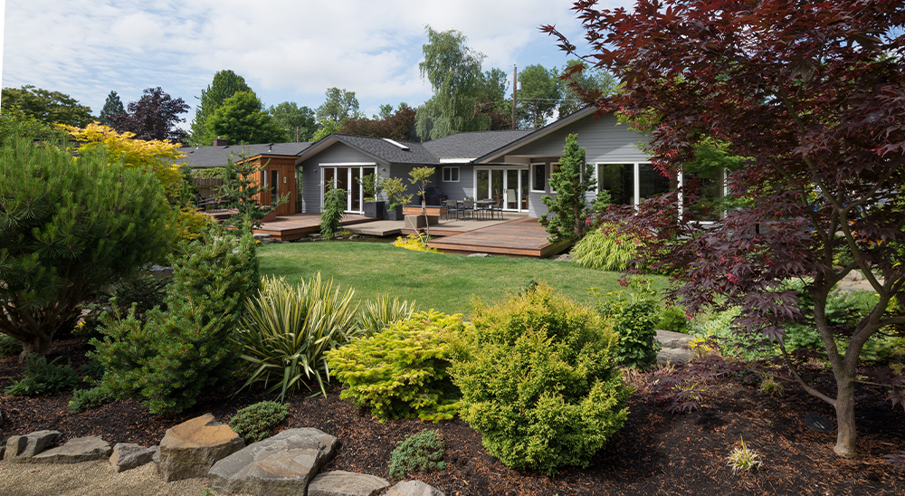royal city nursery guelph creating privacy in the landscape hideaway home